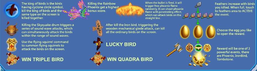 นกพิเศษของ Bird Paradise 9 ตัว