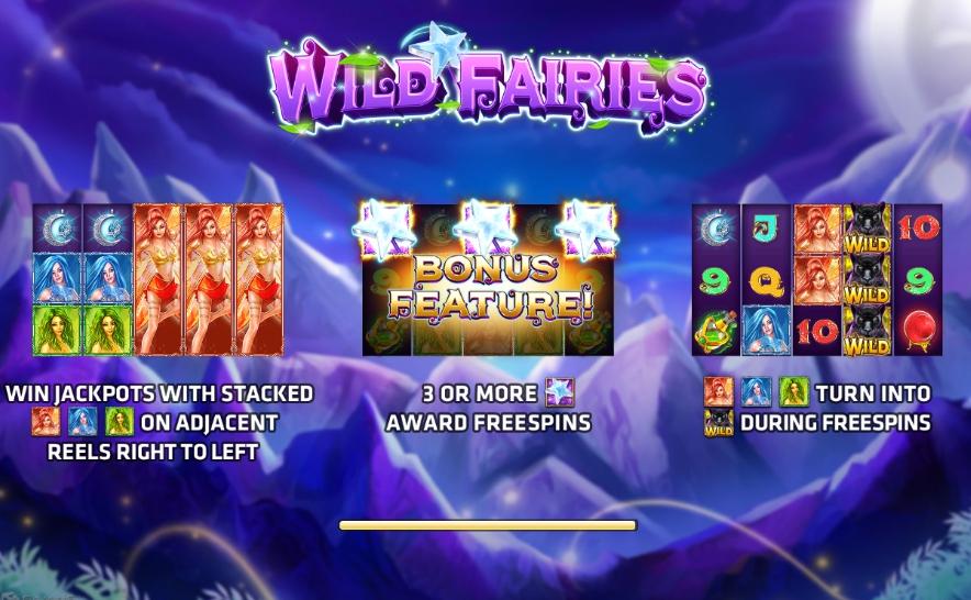 สัญลักษณ์ Wild ภายในเกม Wild Fairies