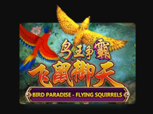 Bird-Paradise-joker-game